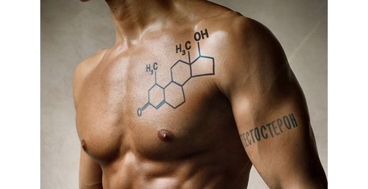 Список продуктов, которые уничтожают тестостерон